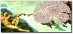 Arte cerebro y creatividad